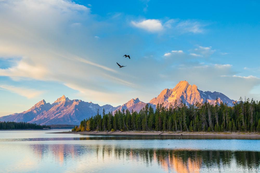 Tetons Mountains Sunrise Lake Geese #0966