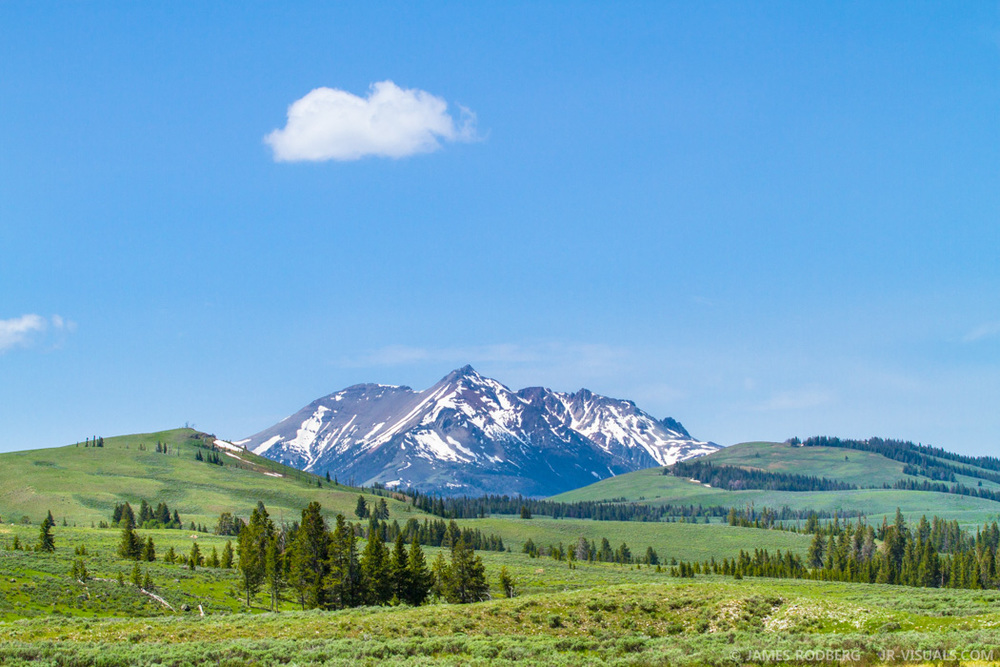 Yellowstone Mountains Valley #7862