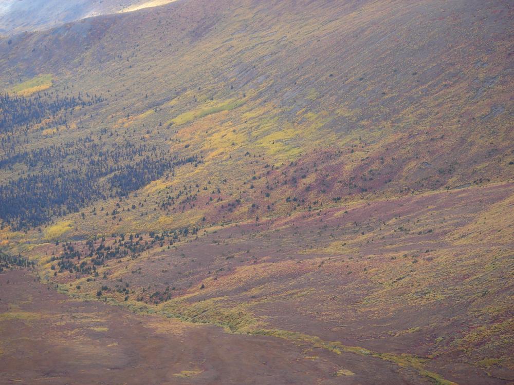 Printers Pass Yukon Sept 2006.jpg