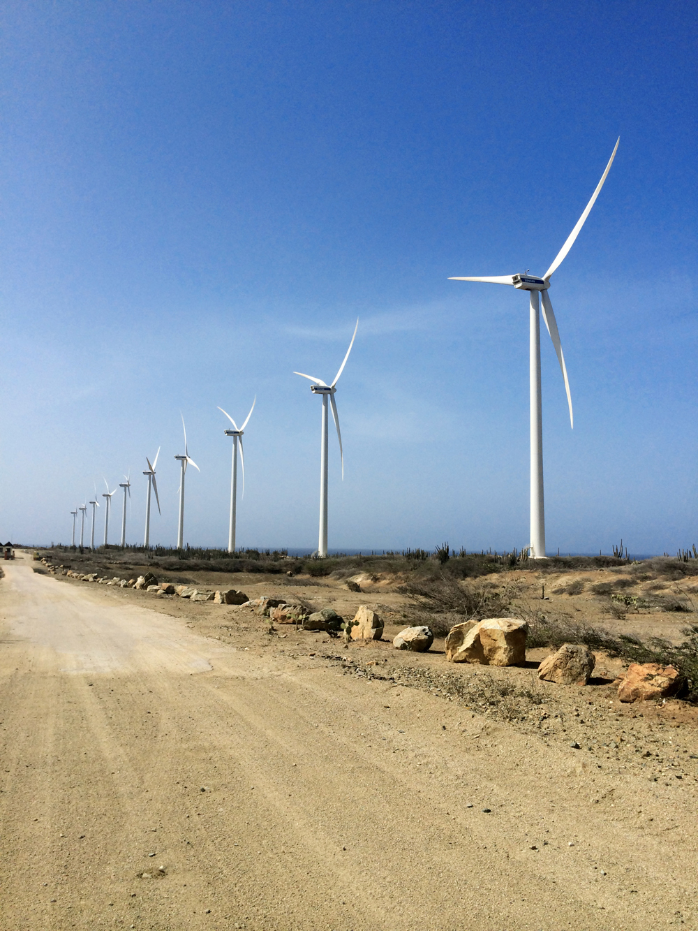 Belive it or not, Aruba's energy is solely generated from these Windmills.