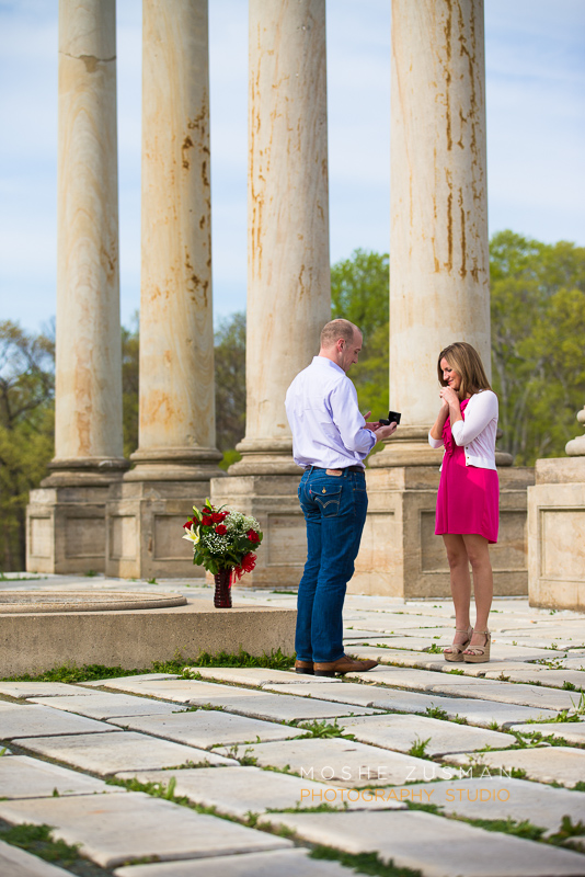 secret-proposal-moshe-zusman-engagement-session-photography-dc national arboretum-5.jpg