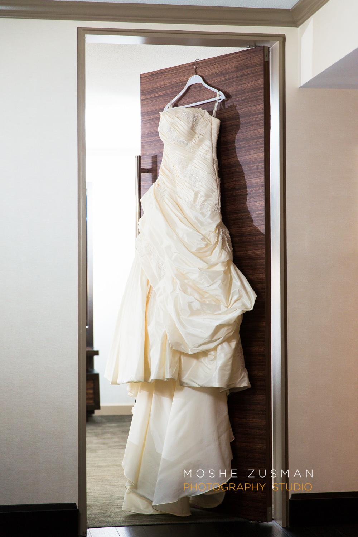 DC_persian_Wedding_Photographer_Moshe_Zusman_hilton_mclean-4.jpg