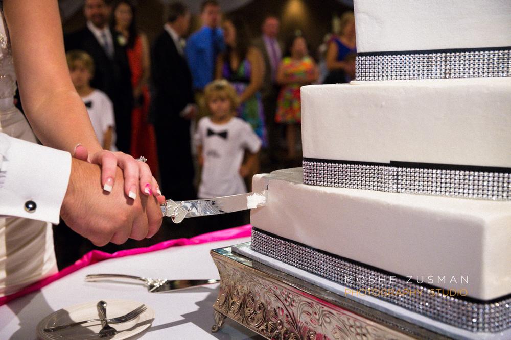 Moshe_Zusman_Wedding_Photography_Emily_Cameron_Eggly_Ohio-69.jpg