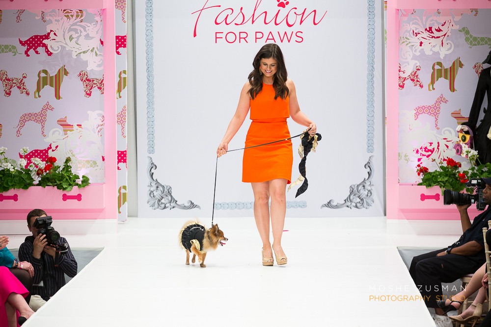Fashion For Paws 2015