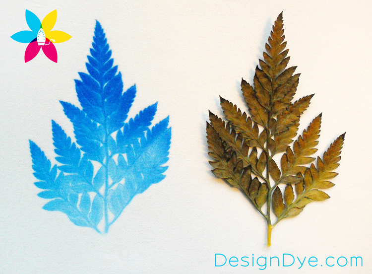 Design Dye Natural Prints