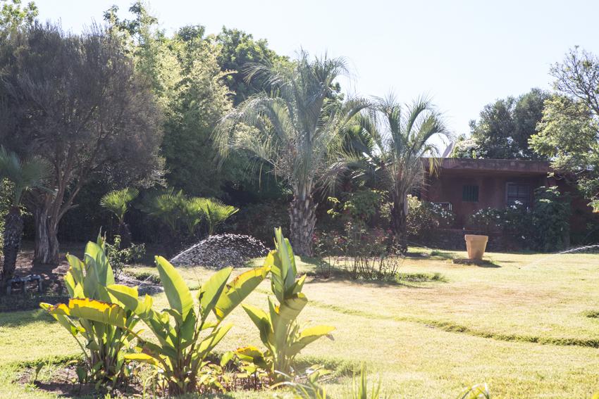 Arbres&Bambous.Cr-Sife.ElAmine-141655.jpg