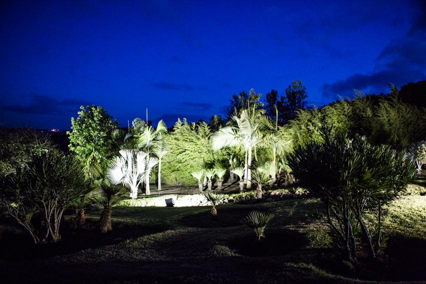 Arbres&Bambous.Nuit.Cr-Sife.ElAmine-141692.jpg