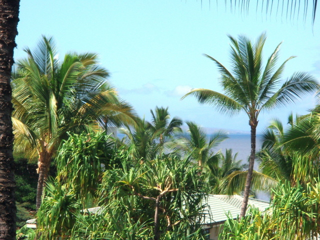 View toward Kahoolawe.JPG