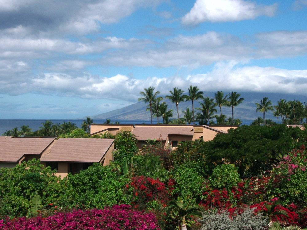 View from West Maui Mountains.JPG