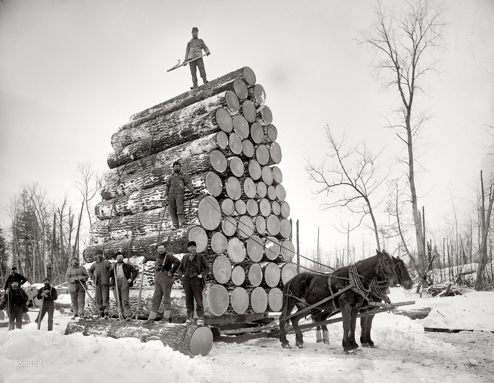 Image courtesy of Shorpy.com