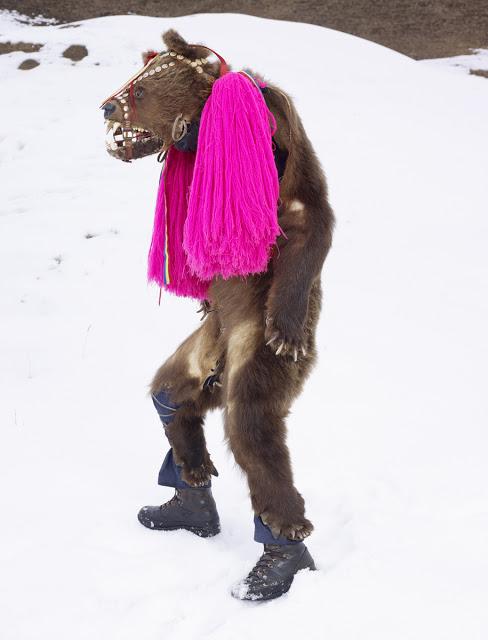 Ursul din Palanca, Romania, Serie WILDER MANN_CHARLES FREGER_2010-2011 (2).jpg