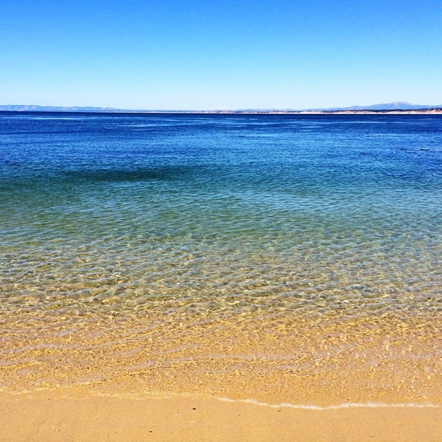 Unbelievably gorgeous day in #monterey today. #ocean #latergram #vscocam