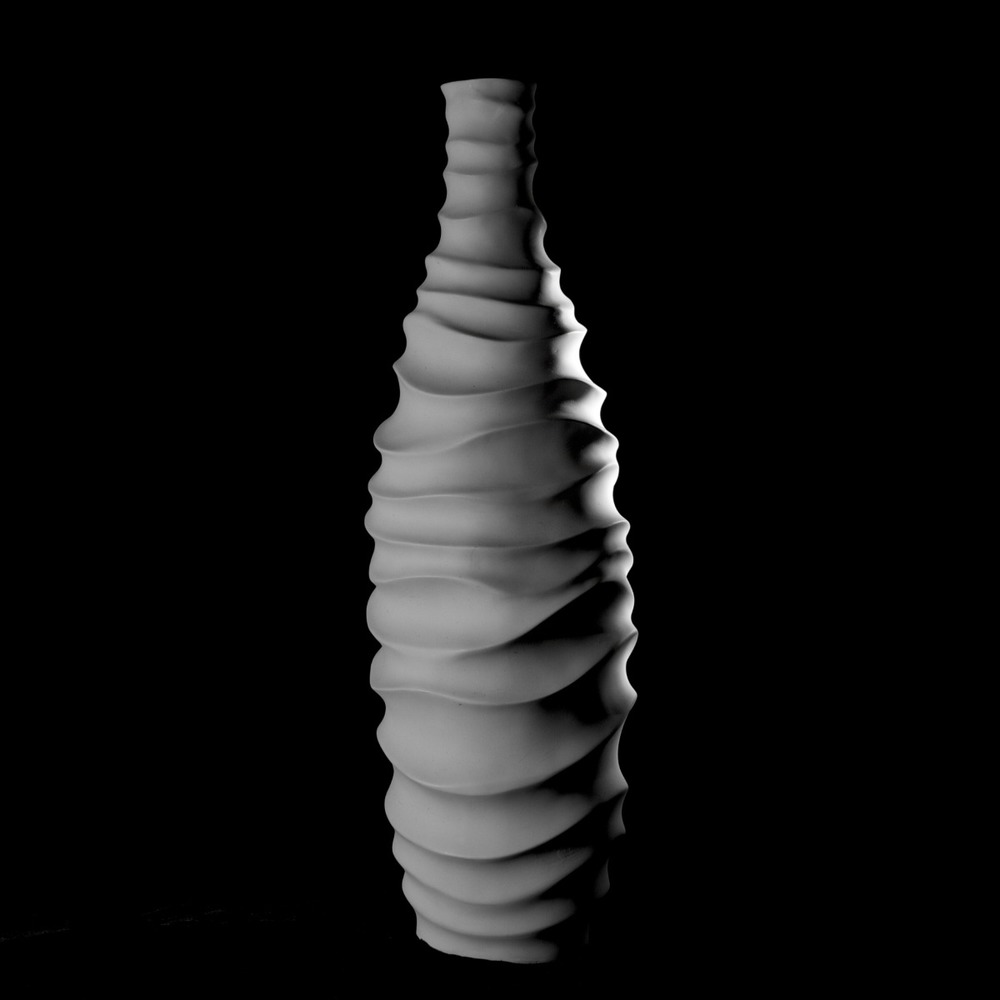 2011-12-24 at 15-48-57 still life white vase light shadow bone waves2.jpg