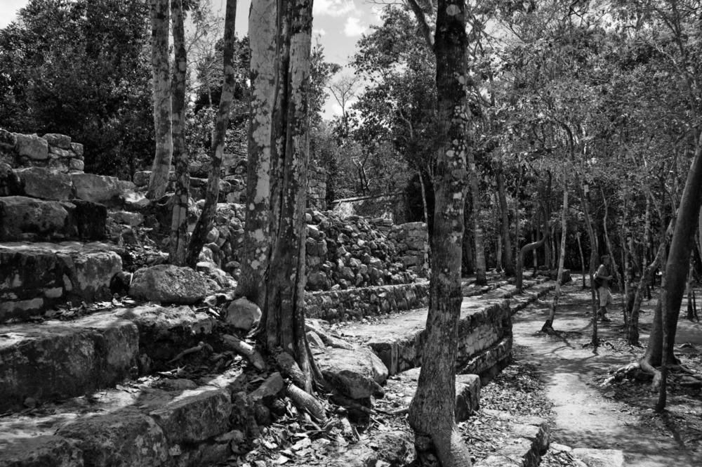 2011-03-16 at 11-11-25 archeology, black & white, coba, history, landscape, mexico, rocks, ruins, trees.jpg