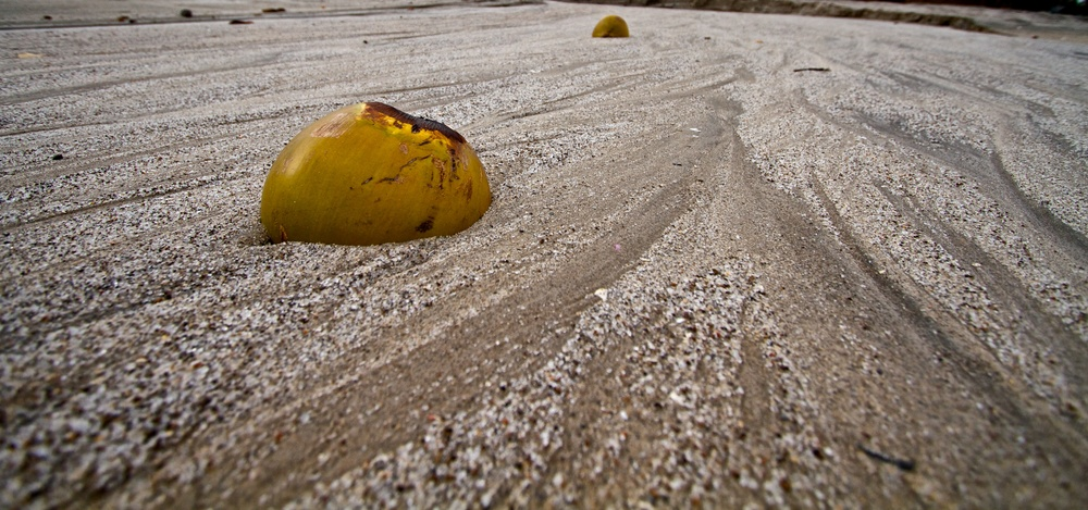 2012-12-27 at 15-10-56 Nature, Still Life, Coconut, Sand, Beach, Ocean, Erosion, Water.jpg