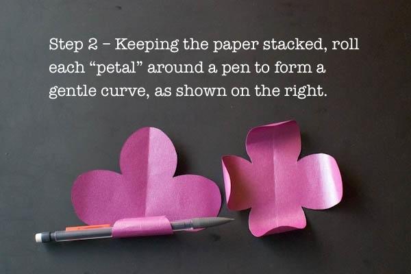 WP - Step 2.jpg