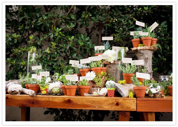 romantic-succulent-wedding-6.jpg