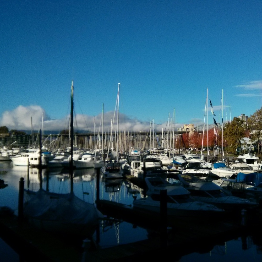Granville Island again last fall #nofuckingfilter