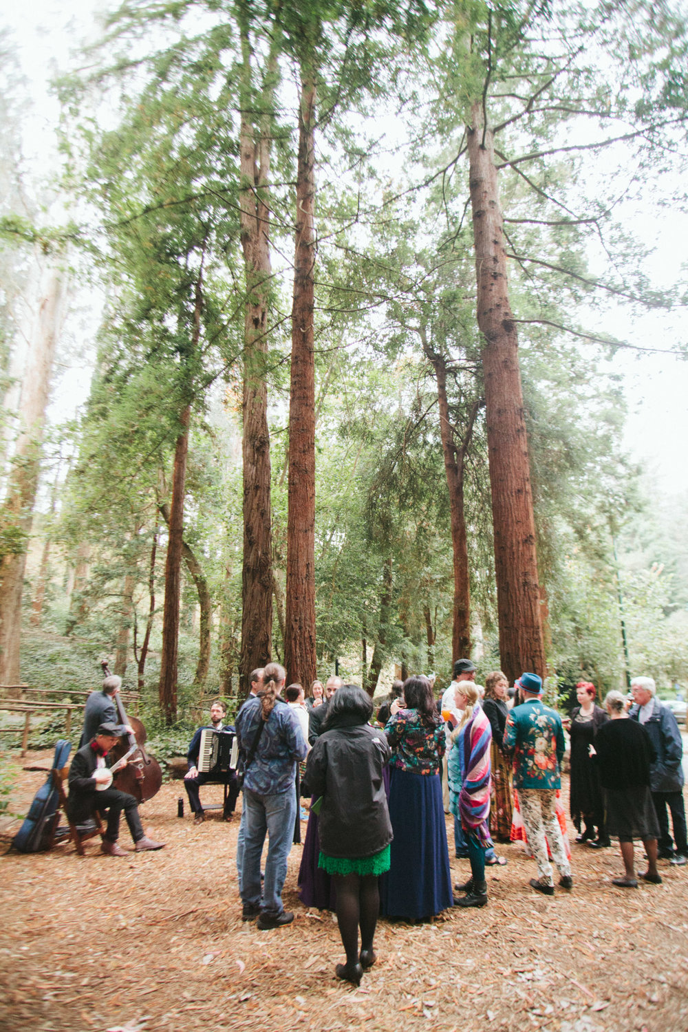 Wedding_Trocadero_house_Stern Grove_offbeat_San_Francisco-36.jpg