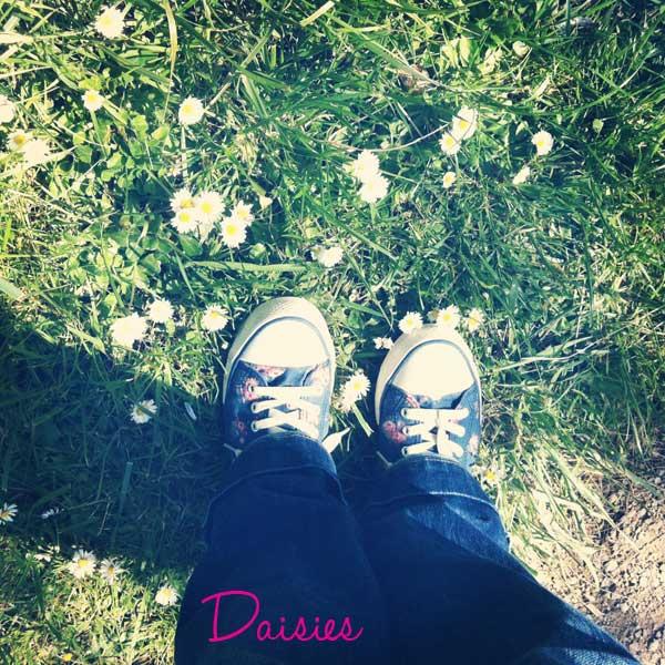 Photo(157)