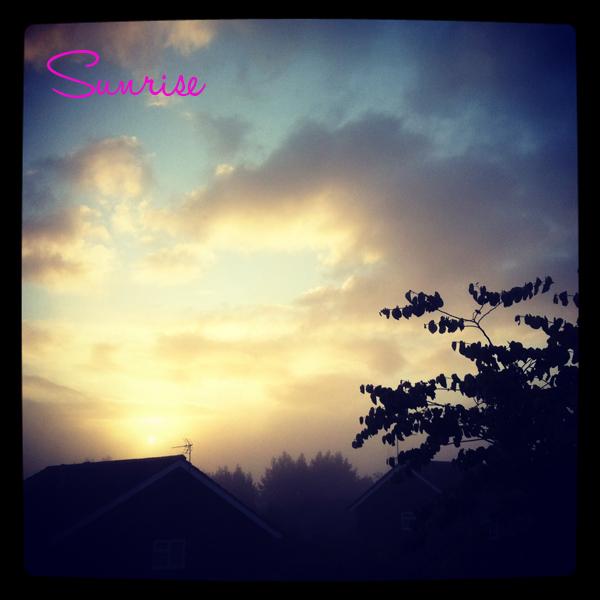 Photo(20)
