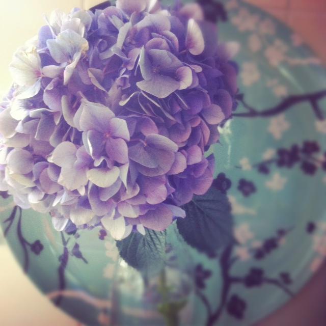 Photo(19)