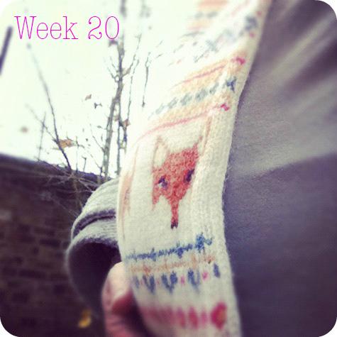 20weeks.jpg