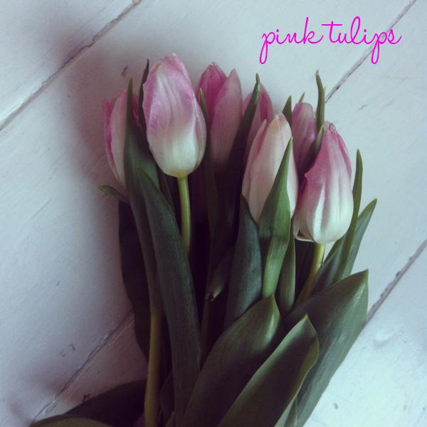 pinktulips.jpg