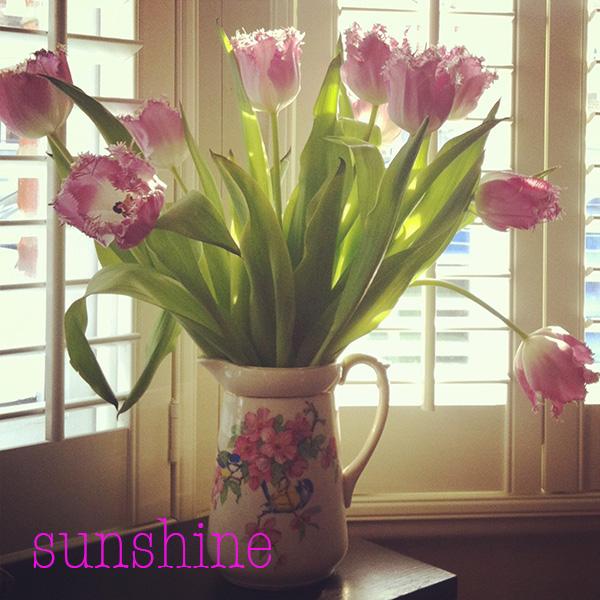 sunshine02.jpg