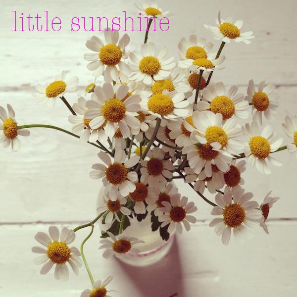 littlesunshine.jpg
