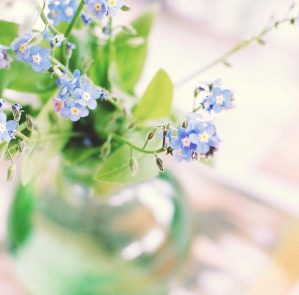 floralfriday 020.jpg