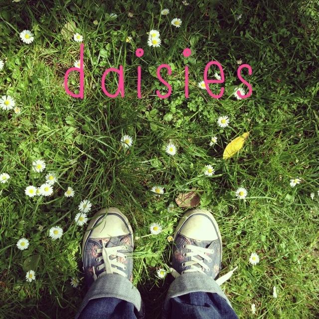 littlethings 025.jpg