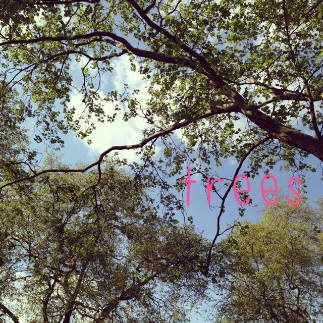littlethings 021.jpg