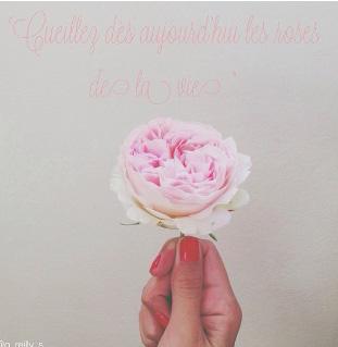 floraljune 001.jpg