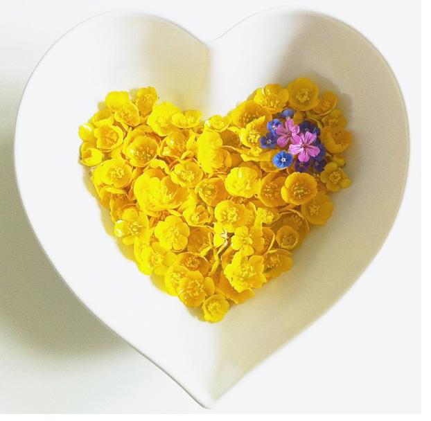 floralfridayjune21 012.jpg