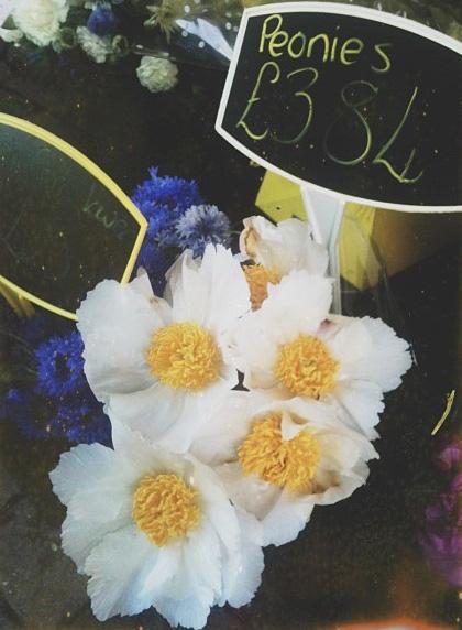 floralfridayaugust 002.jpg