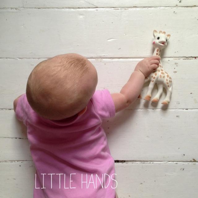 littlethings 065.jpg
