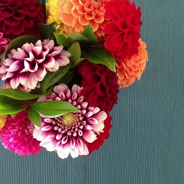 floralfridayaugust 032.jpg