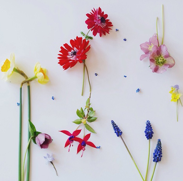 floralfridayseptember 011.jpg