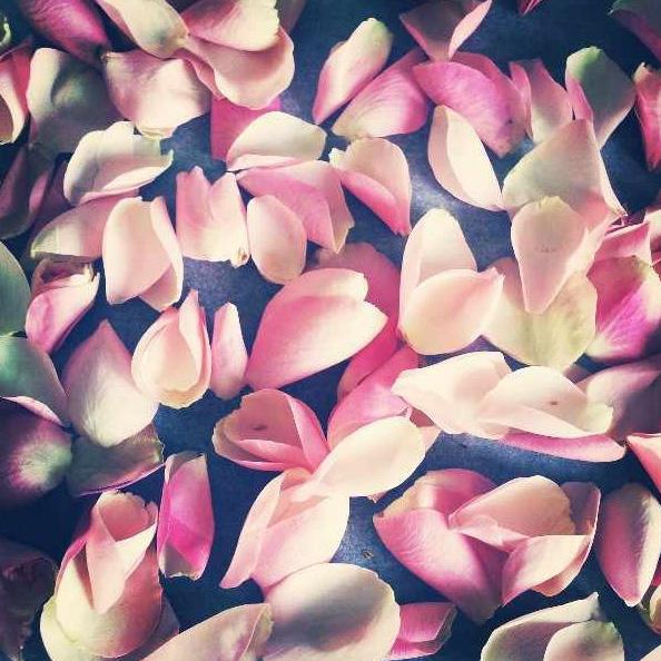 floralfridayseptember 018.jpg