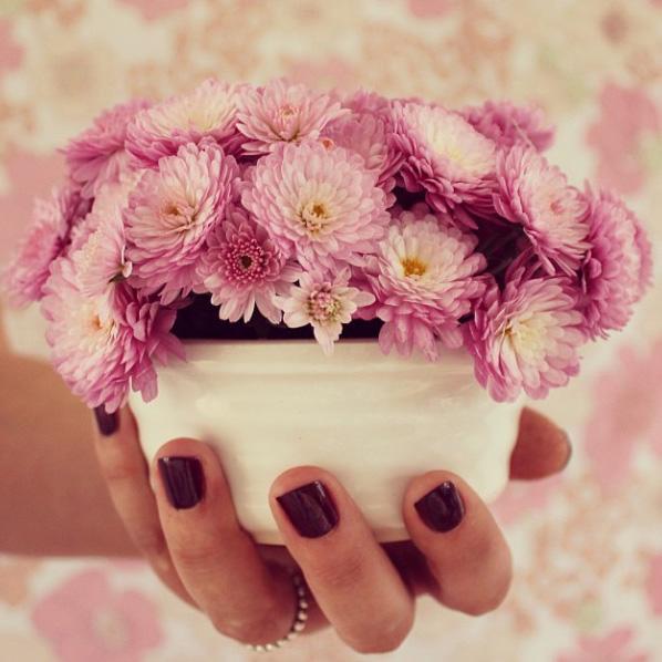 floralfridayseptember 030.jpg