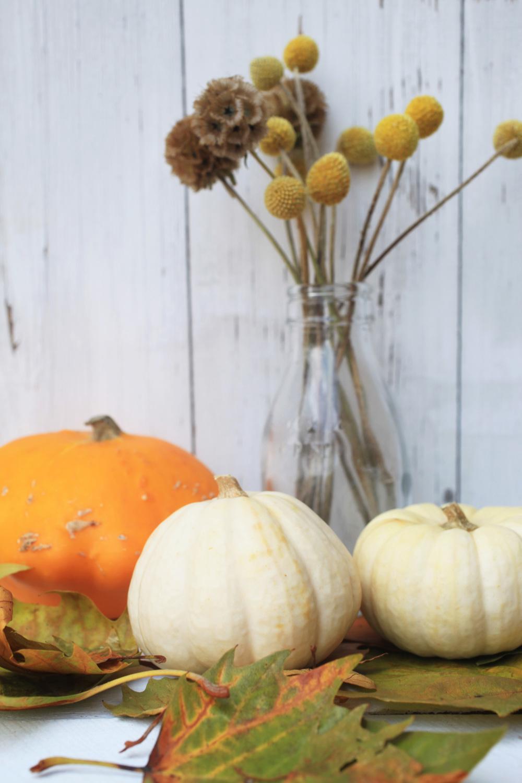 autumn 001.jpg