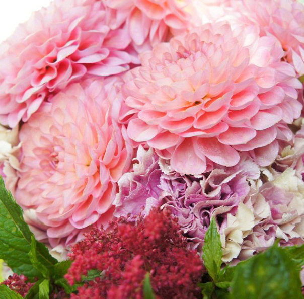 floralfridayOctober 010.jpg