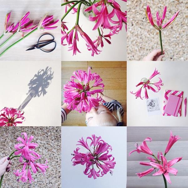 FloralFriday1013 008.jpg