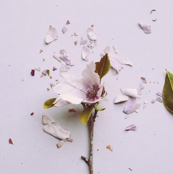 FloralFriday1013 010.jpg