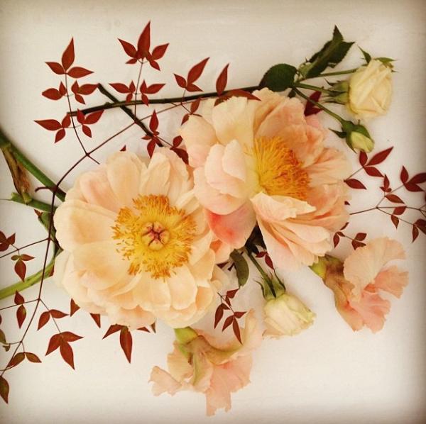 FloralFridayNovember 015.jpg