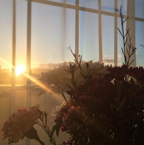 floralfridaynovember 027.jpg