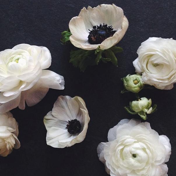 floralfridaynovember 033.jpg