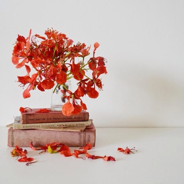 floralfridaynovember 031.jpg