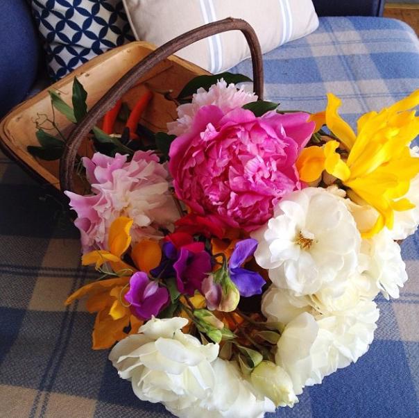 floralfridaynovember 029.jpg